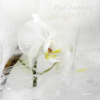 kompaktcd120-pop_ambient15